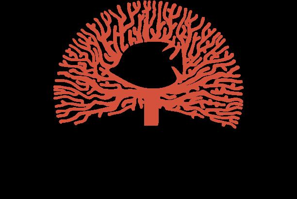Logo | Corallium - Reisbureau Lennik en Gooik